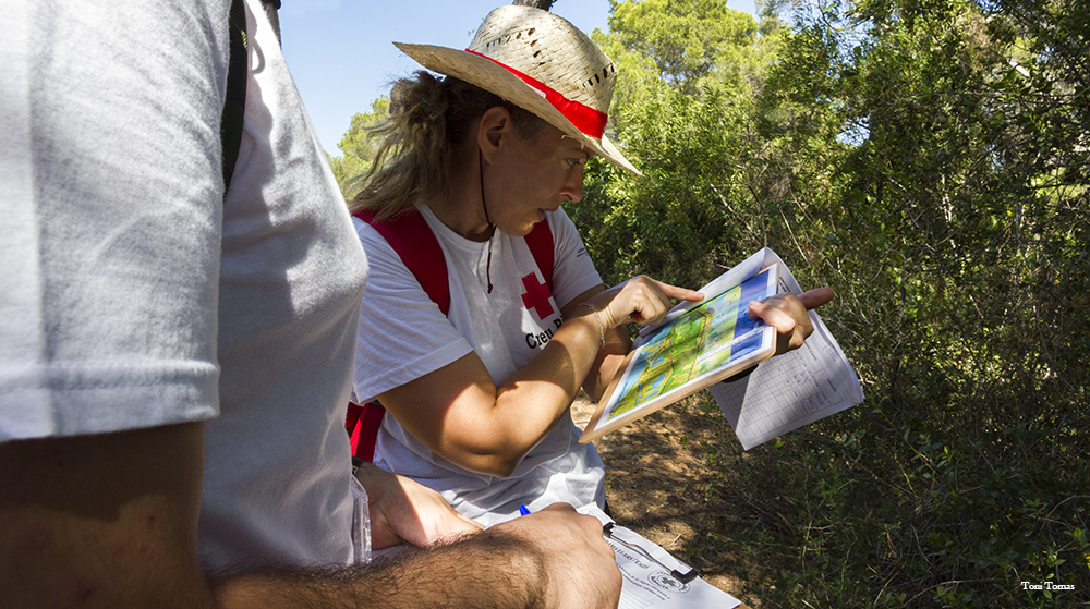 Voluntarios en el parque natural de la Albufera Devesa
